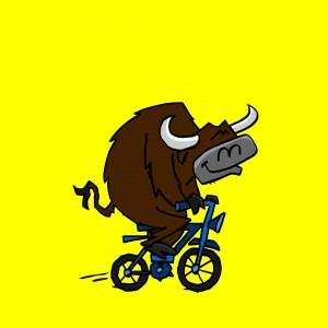 bull on a bike